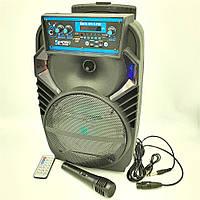"""Портативная колонка 8"""" аккумуляторная беспроводная Bluetooth караоке с проводным микрофоном USB FM 40 Вт, фото 1"""