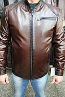 Куртка кожаная мужская 054-F.ARIS Коричневый