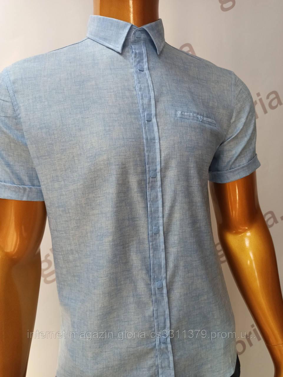 Мужская рубашка Amato. AG.19913(g). Размеры:L,XL(2), XXL.