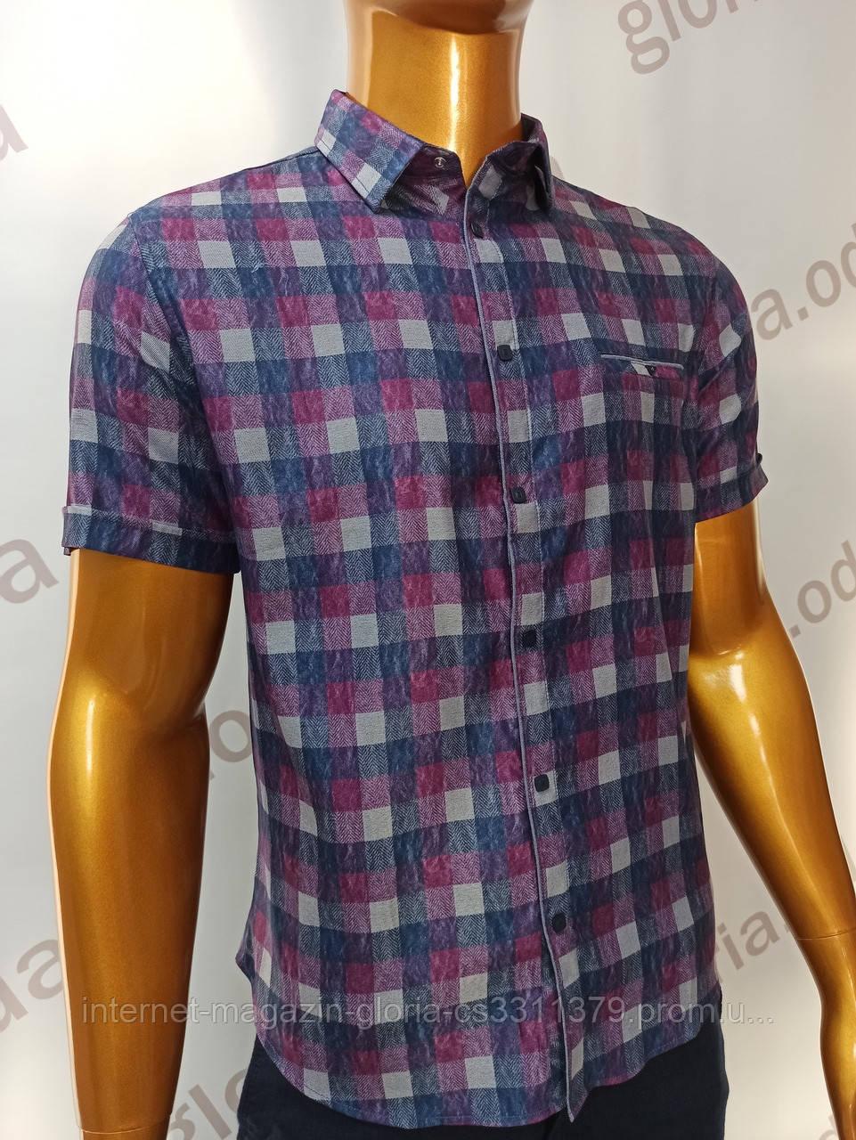 Мужская рубашка Amato. AG.KG19585(f). Размеры: L,XL(2),XXL.