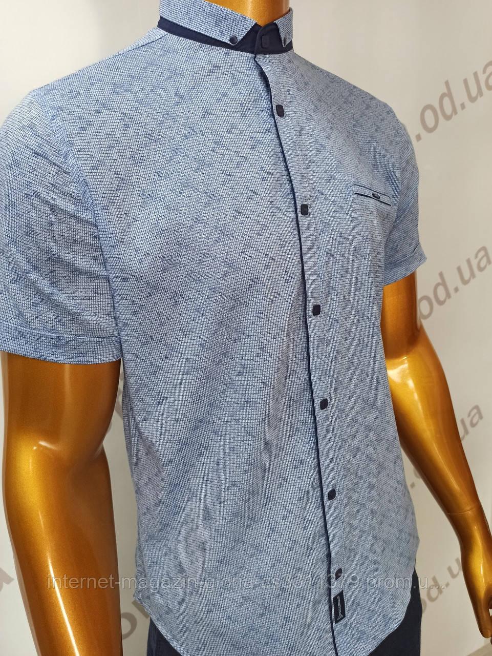 Мужская рубашка Amato. AG.19726-2(g). Размеры:L,XL(2), XXL.