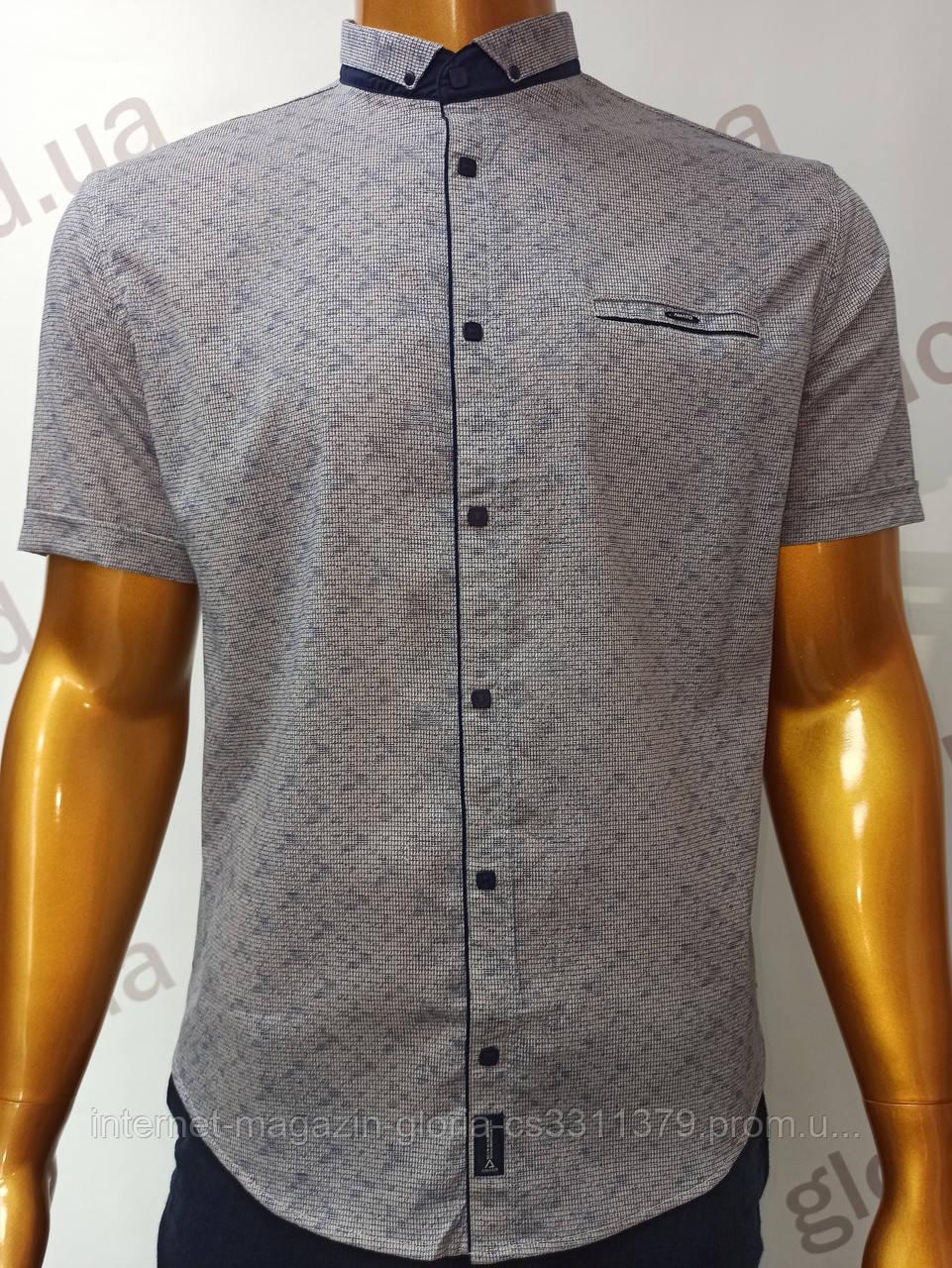Мужская рубашка Amato. AG.19726-2(b). Размеры:L,XL(2), XXL.