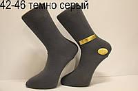 Мужские носки высокие стрейчевые демисезонные МАРЖИНАЛ 42-46 темно серый