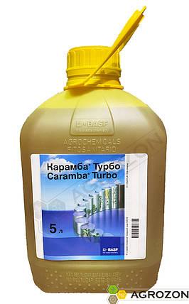 Регулятор роста Карамба Турбо BASF - 5 л, фото 2