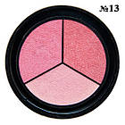 Тени для Век Qianyu MS 1203 Трехцветные Матовые Розовые Оттенки Тон 13 Декоративная Косметика, фото 4