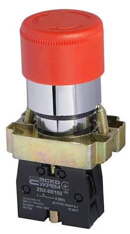 XB2-BS442 Кнопка безопасности. Возврат поворотом. d30mm (A0140010082), фото 2