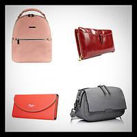 Женские сумки, рюкзаки и кошельки