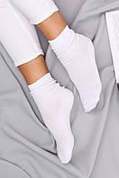 Носки женские сетка размер 37-40 Житомир