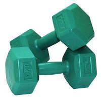 Гантели SportVida 2 по 4 кг SV-HK0220 SKL41-160630