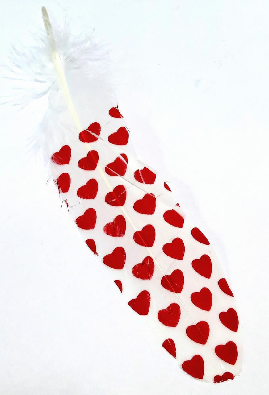 Перо декоративное 21 см, Сердечки
