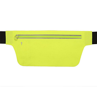 Спортивная сумка на пояс SW01 Accel Yellow SKL25-223366