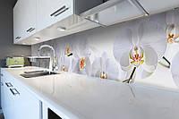 Кухонный фартук Нежные белые Орхидеи (скинали для кухни наклейка ПВХ) цветы на белом фоне 600*2500 мм