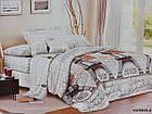 Постельный комплект бязевый Двухспальный, Беларусь, фото 6