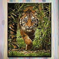 """Картина по номерам ТМ """"Идейка"""" на подрамнике, Тигр """"Король джунглей"""", 40*50 см, без коробки"""