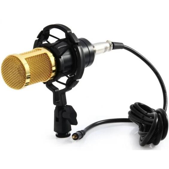 Мікрофон студійний DM 800 Золотий