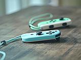 Nintendo Switch Animal Crossing: New Horizons Edition (Upgraded version) 2020, фото 6