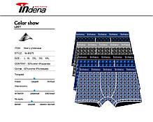 Мужские стрейчевые боксеры «INDENA»  АРТ.95075, фото 2