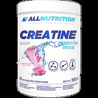 Креатиновый комплекс Creatine Muscle Max - 500g Buble Gum (Жвачка) - All Nutrition