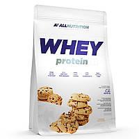 Сывороточный протеин Whey Protein - 2200g Cookies Cream (Крем и печенье) - All Nutrition