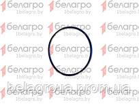 044-048-25-2-2 Кольцо уплотнительное, Беларусь