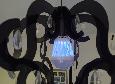 Антимоскітна світлодіодна лампочка Noveen IKN803 LED, фото 6