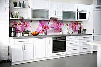 Вініловий кухонний фартух Орхідея Сакраменто (скіналі для кухні наклейка ПВХ) рожеві квіти краплі роса, фото 1