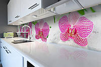 Вініловий кухонний фартух Делікатні Орхідеї (скіналі для кухні наклейка ПВХ) рожеві квіти Білий 600*2500мм, фото 1