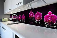Виниловый кухонный фартук Фиолетовый Орхидеи 02 (скинали для кухни наклейка ПВХ) цветы Черный 600*2500 мм, фото 1
