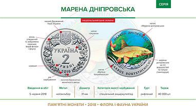 Марена дніпровська монета 2 гривні, фото 3