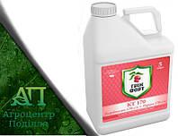 Протравитель Гринфорт КТ 170 (карбоксин, 170 г/л + тирам, 170 г/л) аналог Витавакс