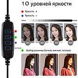 Кольцевая лампа Primo LiveStream селфи-кольцо 16 см на подставке с 2-мя держателями смартфона, фото 4