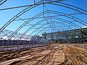 Фермерские теплицы под пленку 10Х30 Фермер ПРОФИ - 10.2-У (300 м2), фото 3