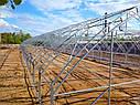 Фермерские теплицы под пленку 10Х30 Фермер ПРОФИ - 10.2-У (300 м2), фото 8