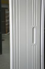 Шкаф-купе Неман «Анжелика», фото 2