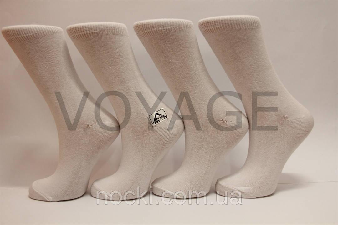 Женские носки высокие стрейчевые гладкие Житомир 35-41 белый