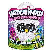 Хэтчималс Хетчибейбиз Чубастик  Spin Master / Hatchimals HatchiBabies ChipatreeHatching Egg, фото 1