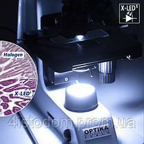 Микроскоп Optika B-155 40x-1000x Mono, фото 3