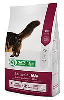 Nature's Protection Large cat Adult сухой корм для кошек больших пород