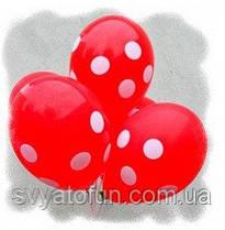 """Латексні повітряні кульки """"Горошок-полька білий на червоному"""", 12""""(30см), 20 шт/уп., Gemar"""