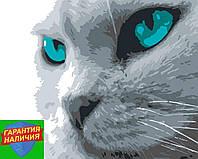 Картина по номерам Голубые глаза (цветной холст) 40*50см Розпис по номерах