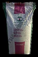 Семена свеклы «Рекорд Поли» 20 кг (мешок)