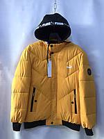 Куртки теплі на хутрі НОРМА