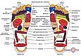 Массажер для ног Foot massager bliss Блаженство XM, фото 4