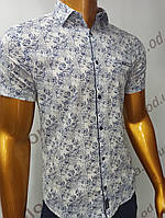 Мужская рубашка Amato. AG.19885. Размеры:M,L,XL, XXL., фото 1