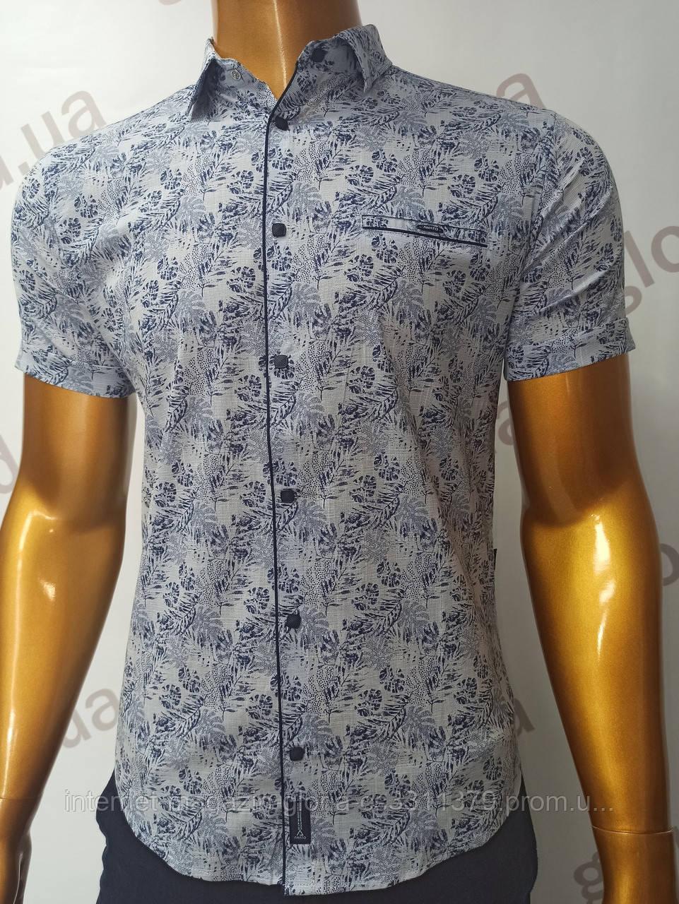 Мужская рубашка Amato. AG.19885(g). Размеры:M,L,XL, 2XL.