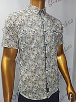 Мужская рубашка Amato. AG.19885(j). Размеры:M,L,XL, 2XL., фото 1