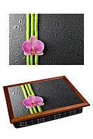 Поднос на подушке BST 040360 44*36 коричневый  стильная орхидея