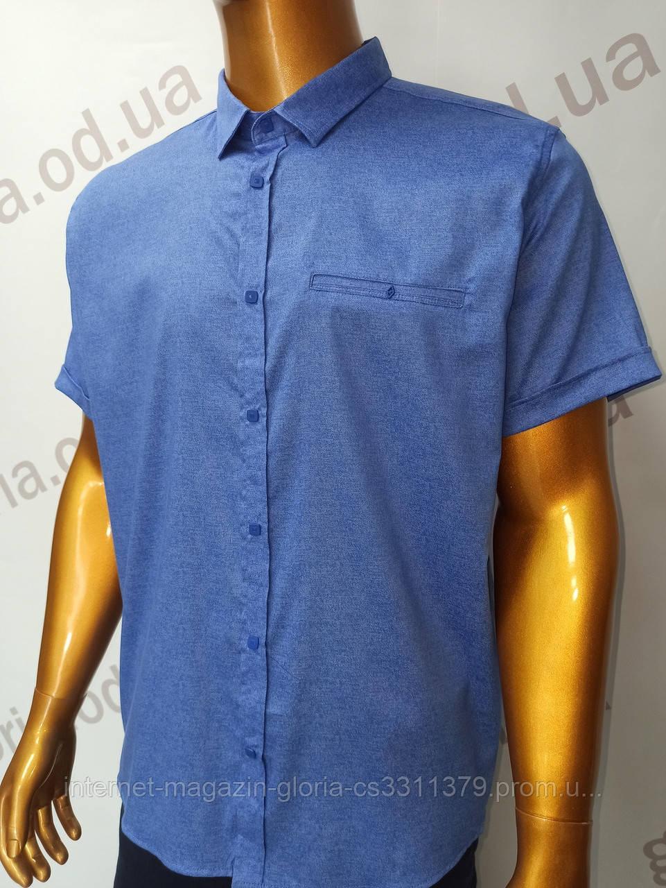Мужская рубашка Amato. AG. 29397-2(g).Батал. Размеры: 2XL,3XL,4XL,5XL.