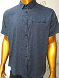Мужская рубашка,Батал, Amato. AG. 29397-2(s). Размеры: 2XL,3XL,4XL,5XL., фото 3