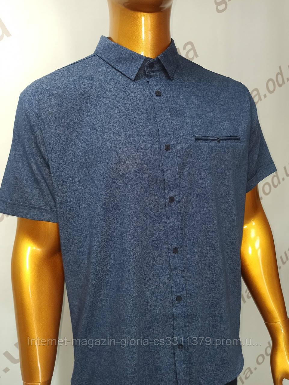 Мужская рубашка Amato. AG. 29397-2(s). Размеры: 2XL,3XL,4XL,5XL.